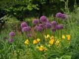 Zahradní a krajinářská architektura