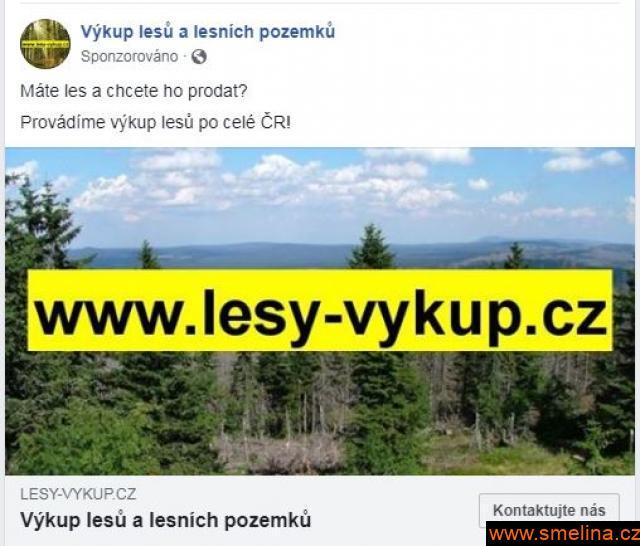 Koupíme lesy , celá ČR