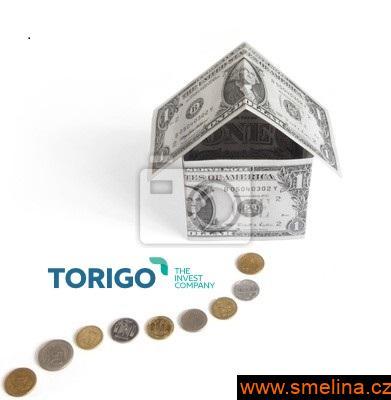 Rychlý výkup nemovitosti s Torigo